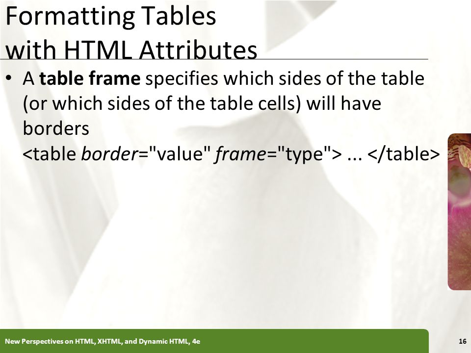 XP Formatting Tables with HTML Attributes A table frame specifies which sides of the table (or which sides of the table cells) will have borders... Ne