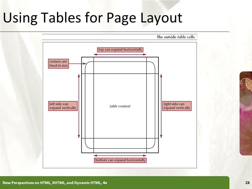 XP Using Tables for Page Layout New Perspectives on HTML, XHTML, and Dynamic HTML, 4e28