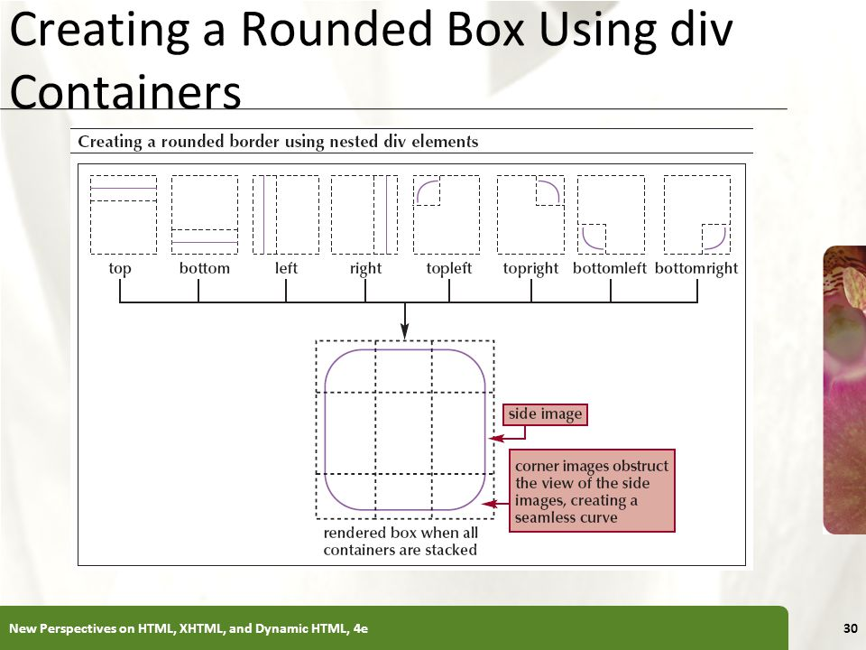 XP Creating a Rounded Box Using div Containers New Perspectives on HTML, XHTML, and Dynamic HTML, 4e30