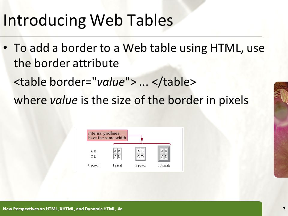 XP Introducing Web Tables To add a border to a Web table using HTML, use the border attribute... where value is the size of the border in pixels New P