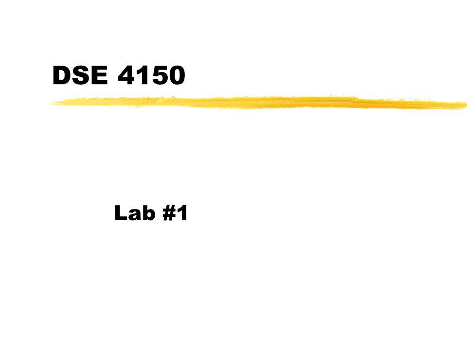 DSE 4150 Lab #1