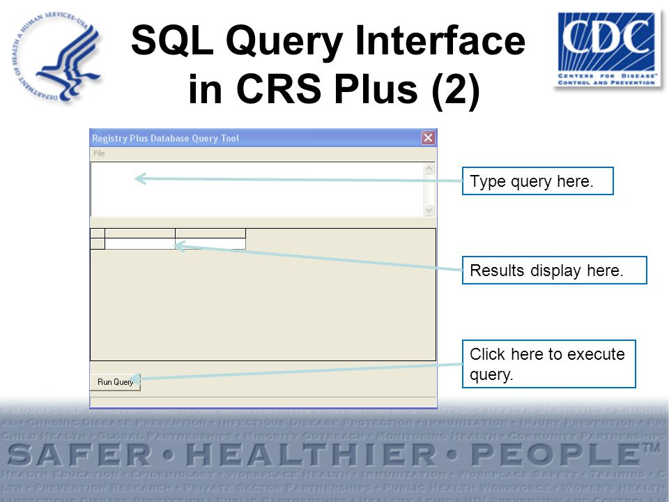 Type query here. Results display here. Click here to execute query. SQL Query Interface in CRS Plus (2)