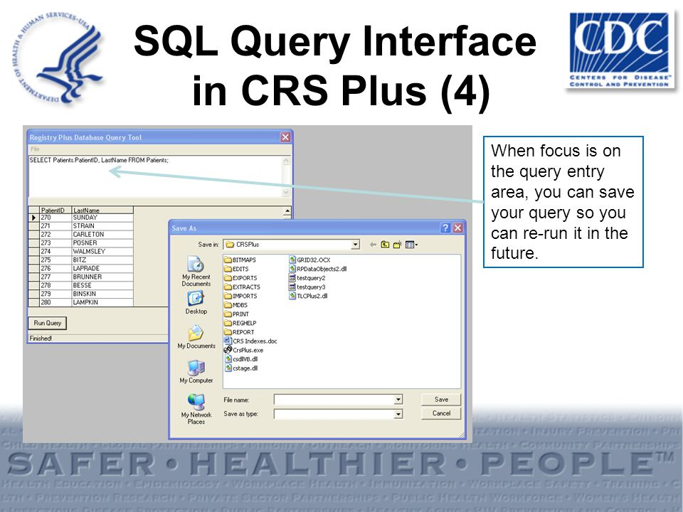 When focus is on the query entry area, you can save your query so you can re-run it in the future. SQL Query Interface in CRS Plus (4)