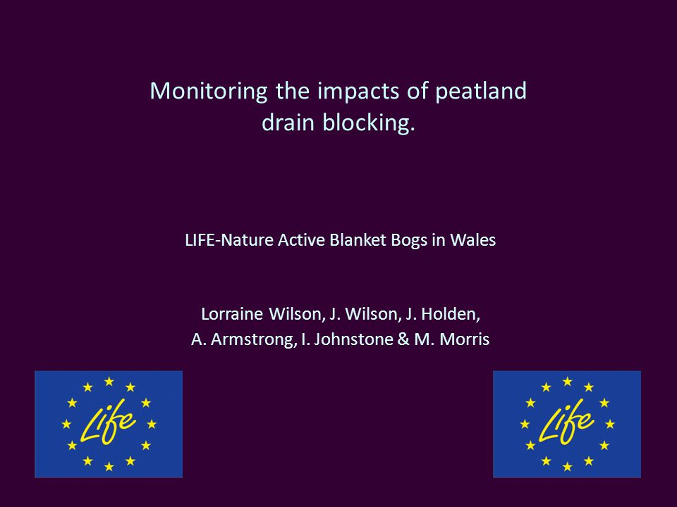 Monitoring the impacts of peatland drain blocking.