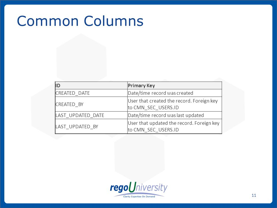 www.regoconsulting.comPhone: 1-888-813-0444 11 Common Columns IDPrimary Key CREATED_DATEDate/time record was created CREATED_BY User that created the record.