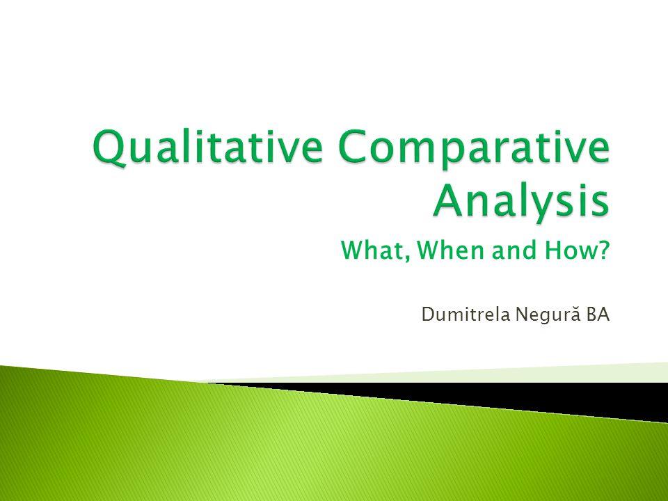 What, When and How? Dumitrela Negură BA