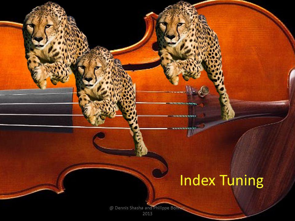 Index Tuning @ Dennis Shasha and Philippe Bonnet, 2013