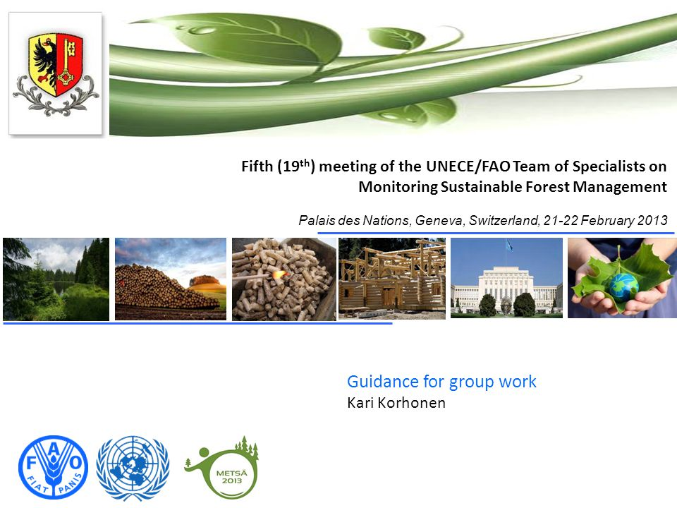 Fifth (19 th ) meeting of the UNECE/FAO Team of Specialists on Monitoring Sustainable Forest Management Palais des Nations, Geneva, Switzerland, 21-22