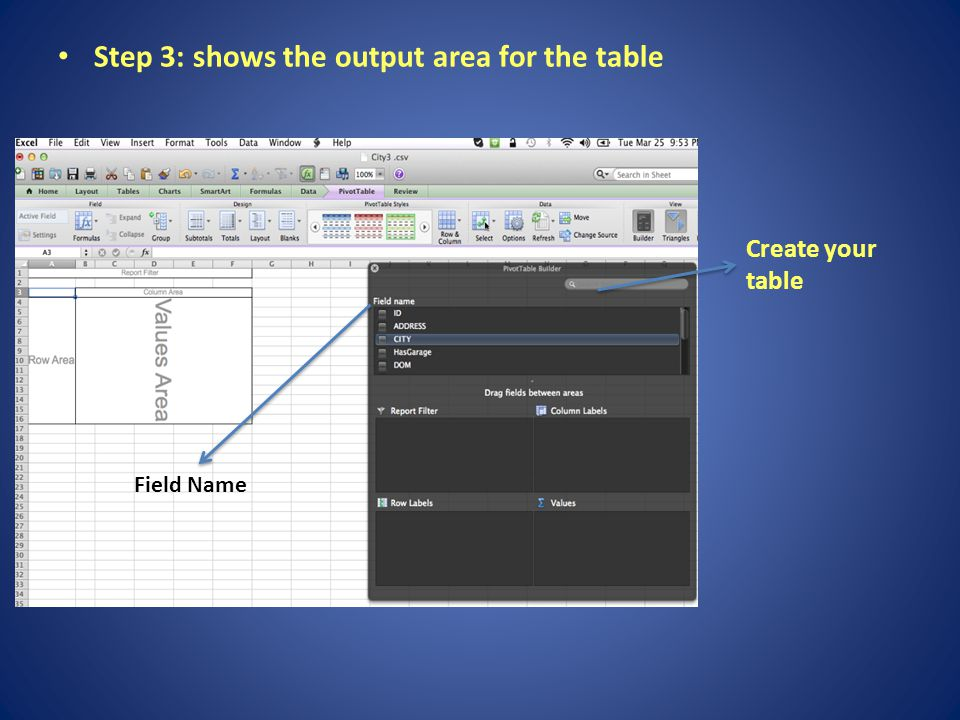 Step 3: shows the output area for the table Create your table Field Name