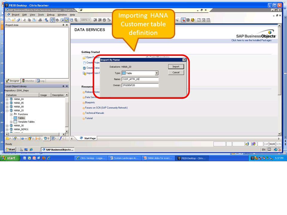 Importing HANA Customer table definition
