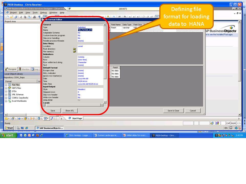 Defining file format for loading data to HANA