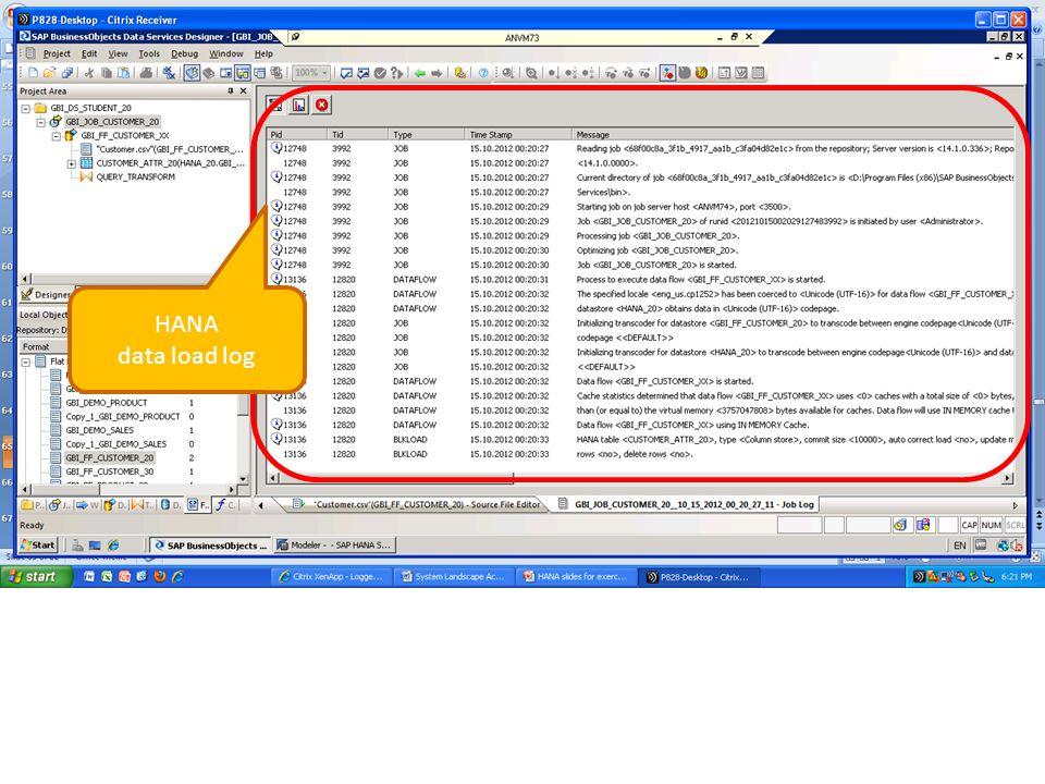 HANA data load log