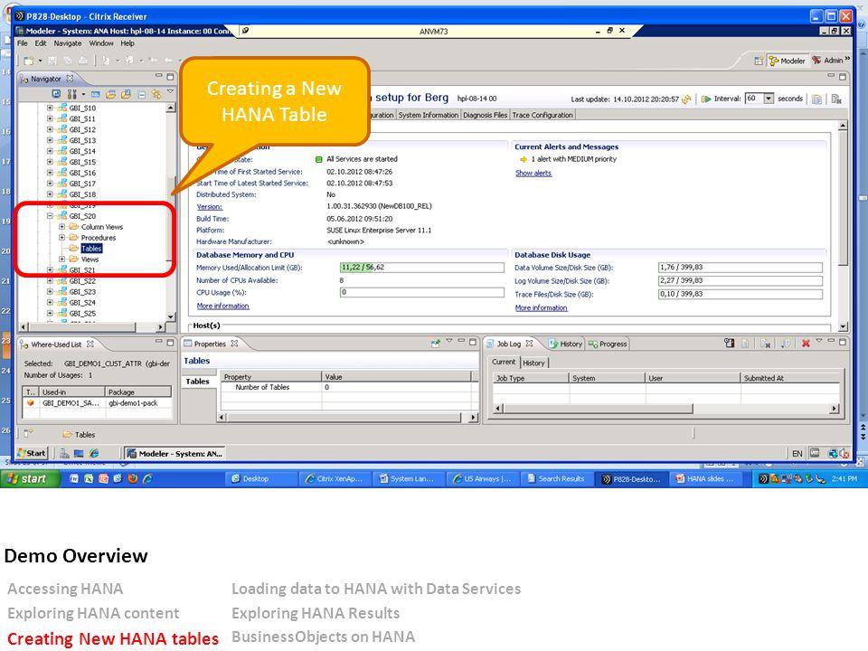 Creating a New HANA Table Accessing HANALoading data to HANA with Data Services Exploring HANA contentExploring HANA Results Creating New HANA tables BusinessObjects on HANA