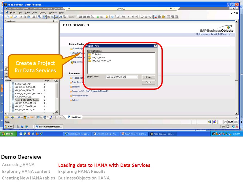 Create a Project for Data Services Accessing HANA Loading data to HANA with Data Services Exploring HANA contentExploring HANA Results Creating New HANA tablesBusinessObjects on HANA Demo Overview
