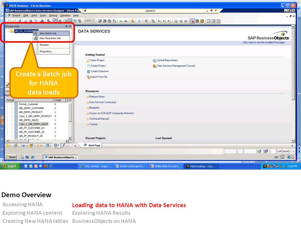 Create a Batch job for HANA data loads Accessing HANA Loading data to HANA with Data Services Exploring HANA contentExploring HANA Results Creating New HANA tablesBusinessObjects on HANA Demo Overview