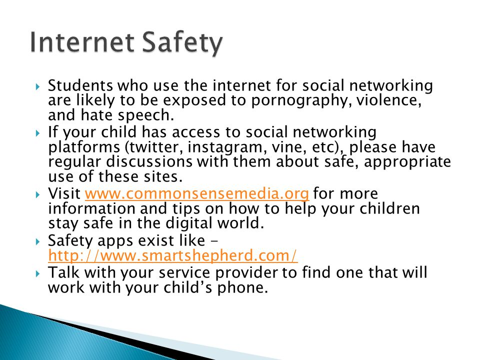 Students who use the internet for social networking are likely to be exposed to pornography, violence, and hate speech.