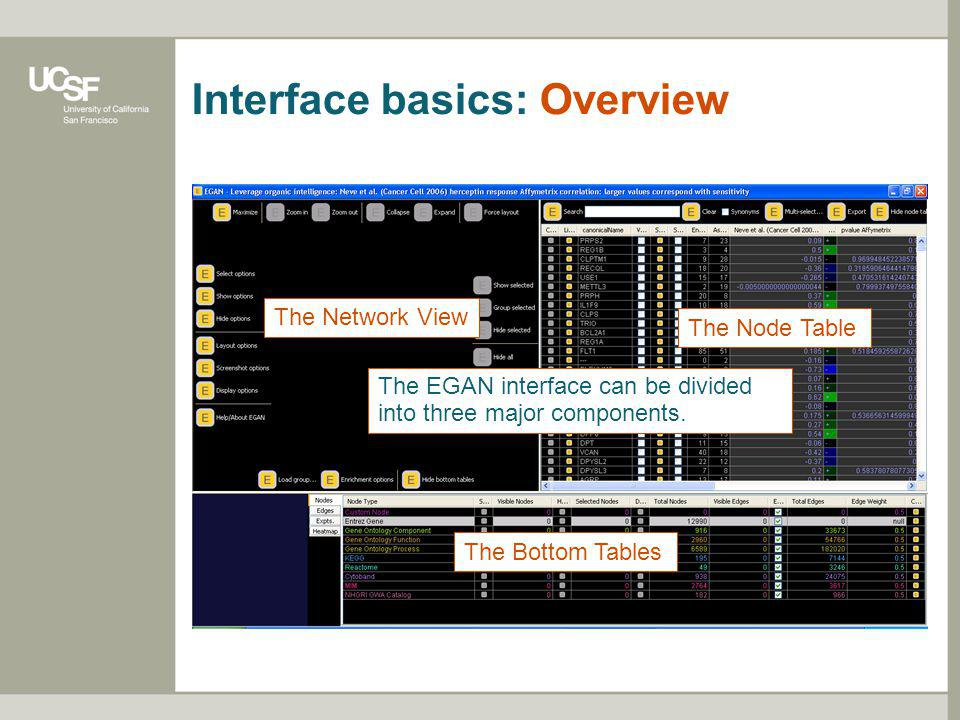 Interface basics: Overview The EGAN interface can be divided into three major components. The Bottom Tables The Node Table The Network View