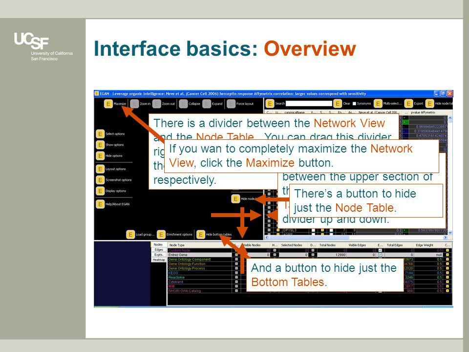 Interface basics: Overview There is a divider between the Network View and the Node Table. You can drag this divider right and left to provide more ro