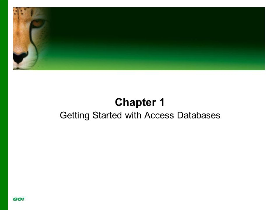 Chapter 1 Getting Started with Access Databases