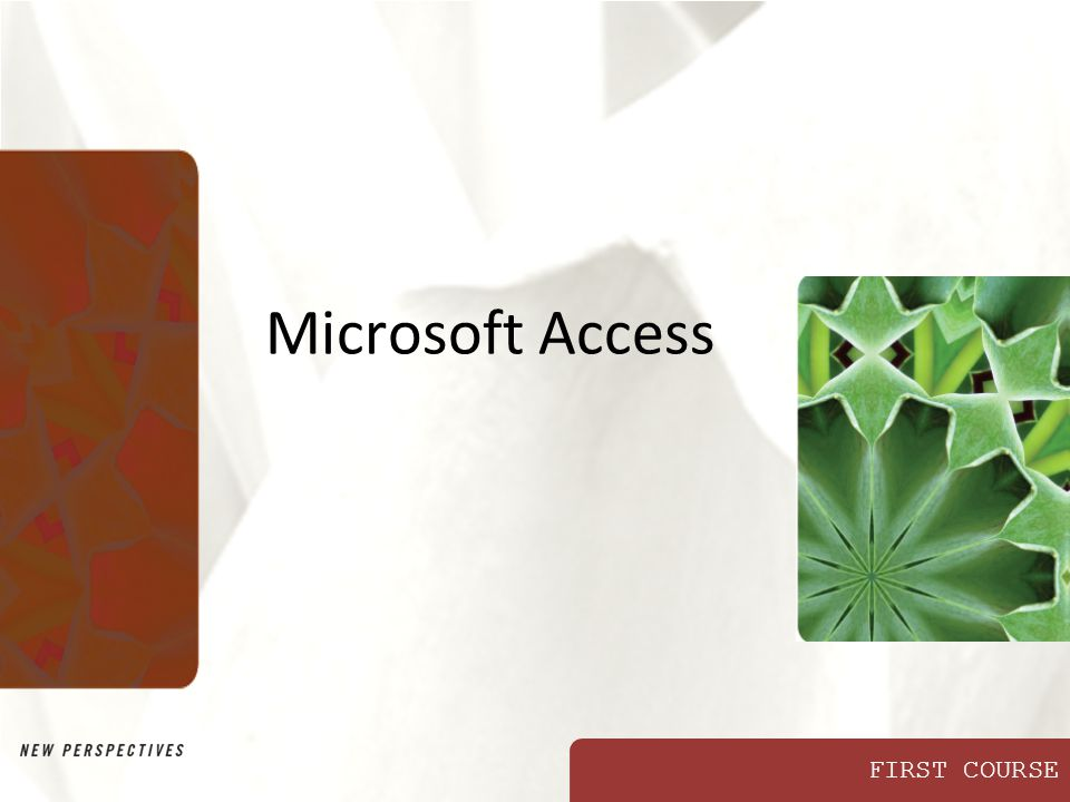 FIRST COURSE Microsoft Access