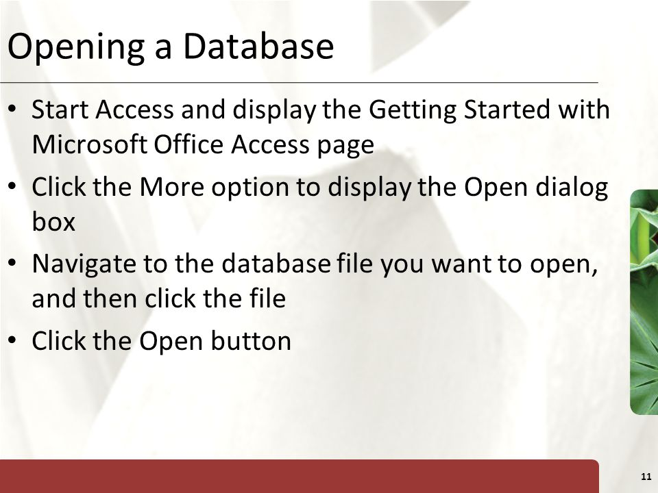 XP 11 Opening a Database Start Access and display the Getting Started with Microsoft Office Access page Click the More option to display the Open dial