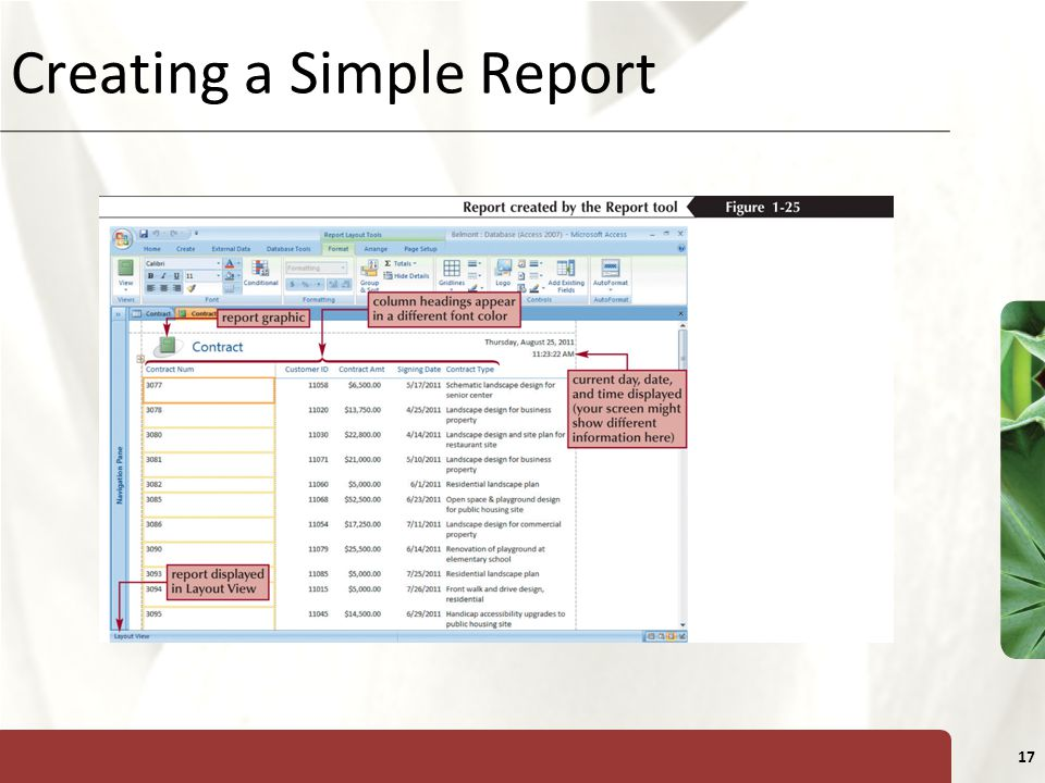 XP 17 Creating a Simple Report