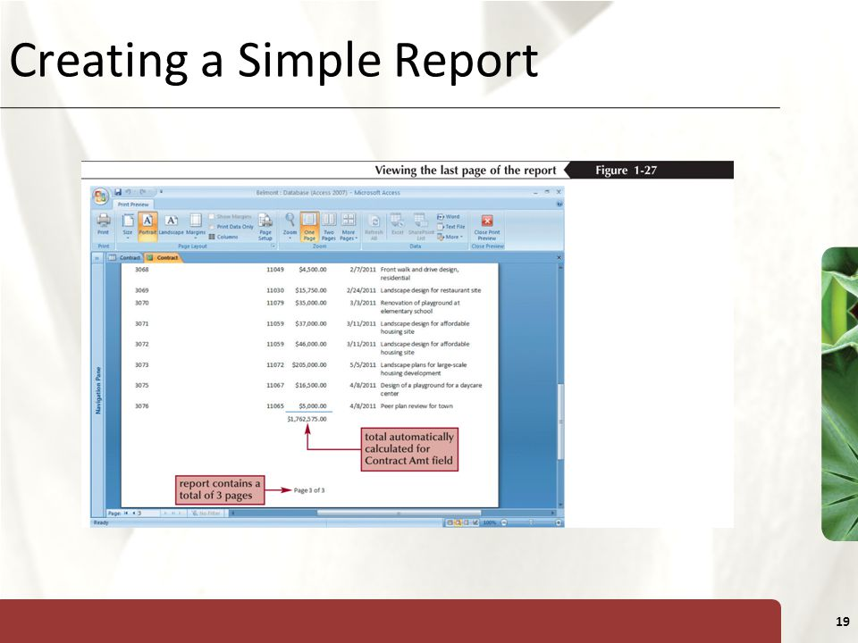 XP 19 Creating a Simple Report