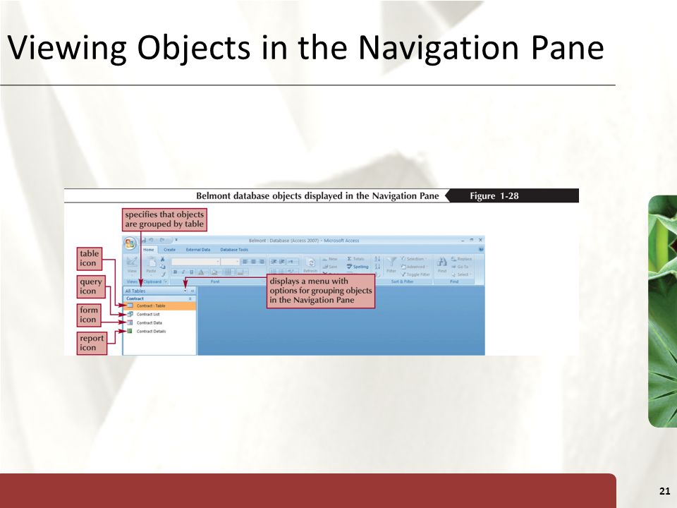 XP 21 Viewing Objects in the Navigation Pane