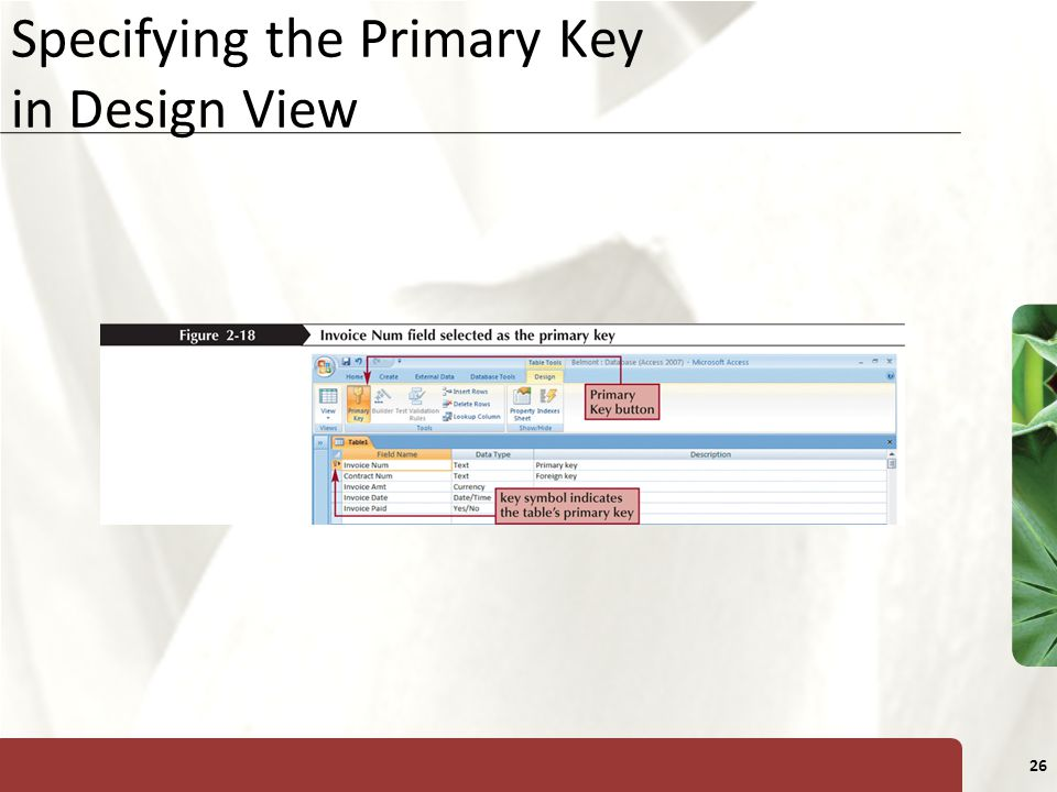 XP 26 Specifying the Primary Key in Design View