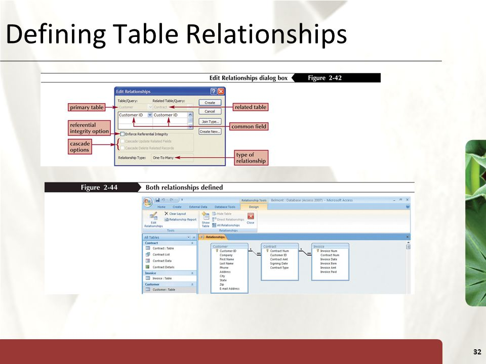 XP 32 Defining Table Relationships
