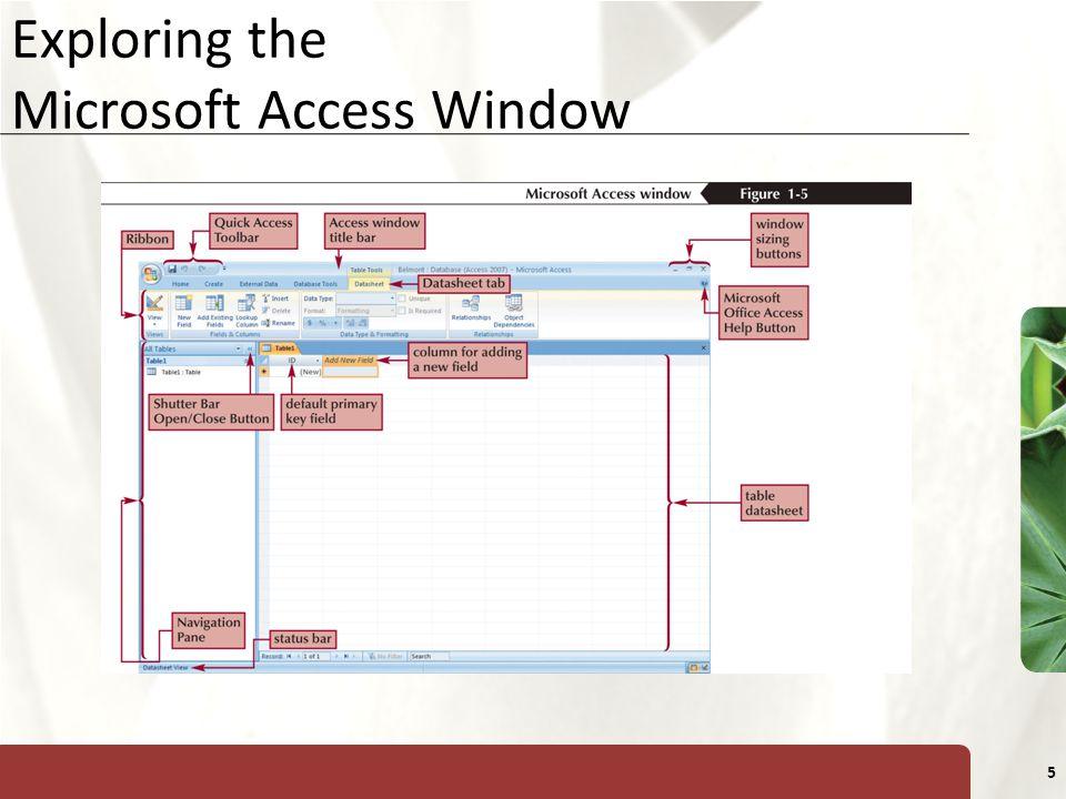 XP 5 Exploring the Microsoft Access Window