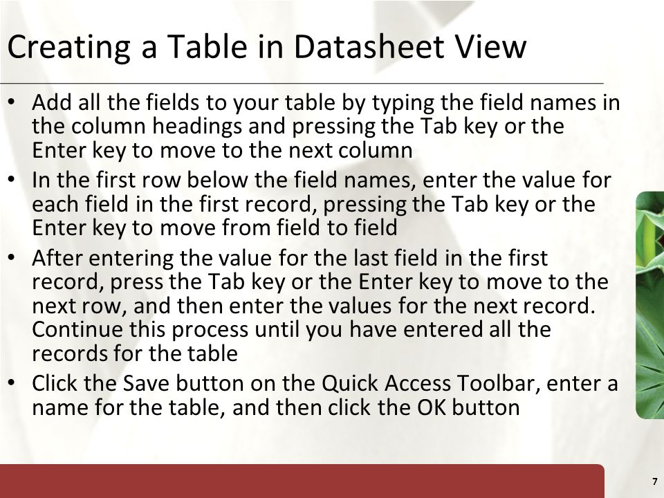 XP 8 Creating a Table in Datasheet View