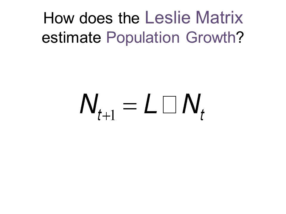 How does the Leslie Matrix estimate Population Growth?