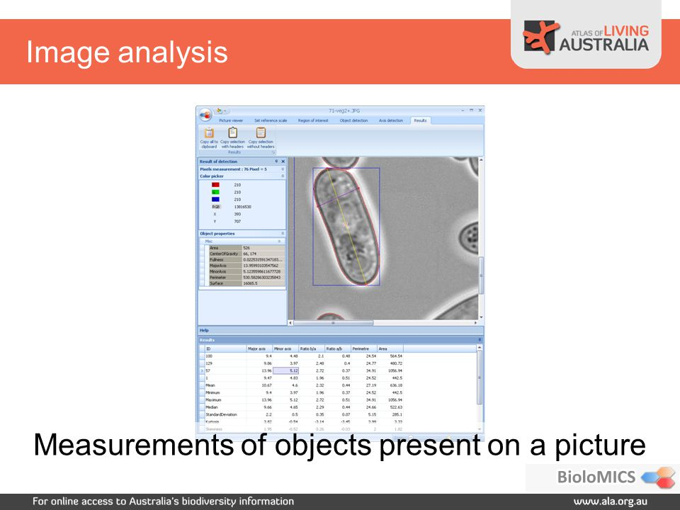 Image analysis Measurements of objects present on a picture