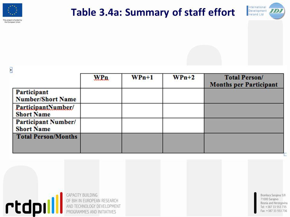 Table 3.4a: Summary of staff effort