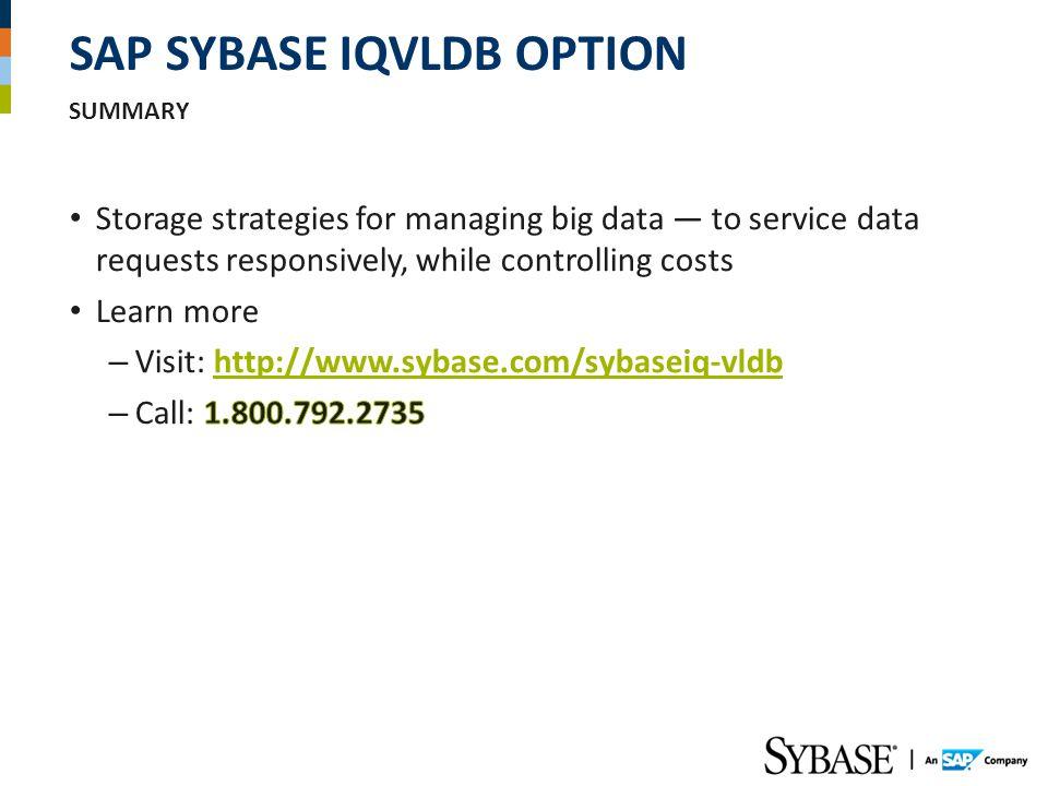 SAP SYBASE IQVLDB OPTION