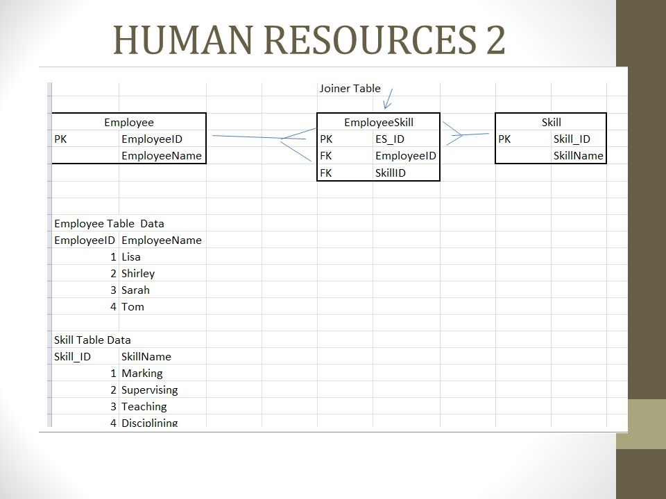 HUMAN RESOURCES 2