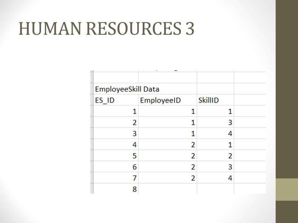 HUMAN RESOURCES 3