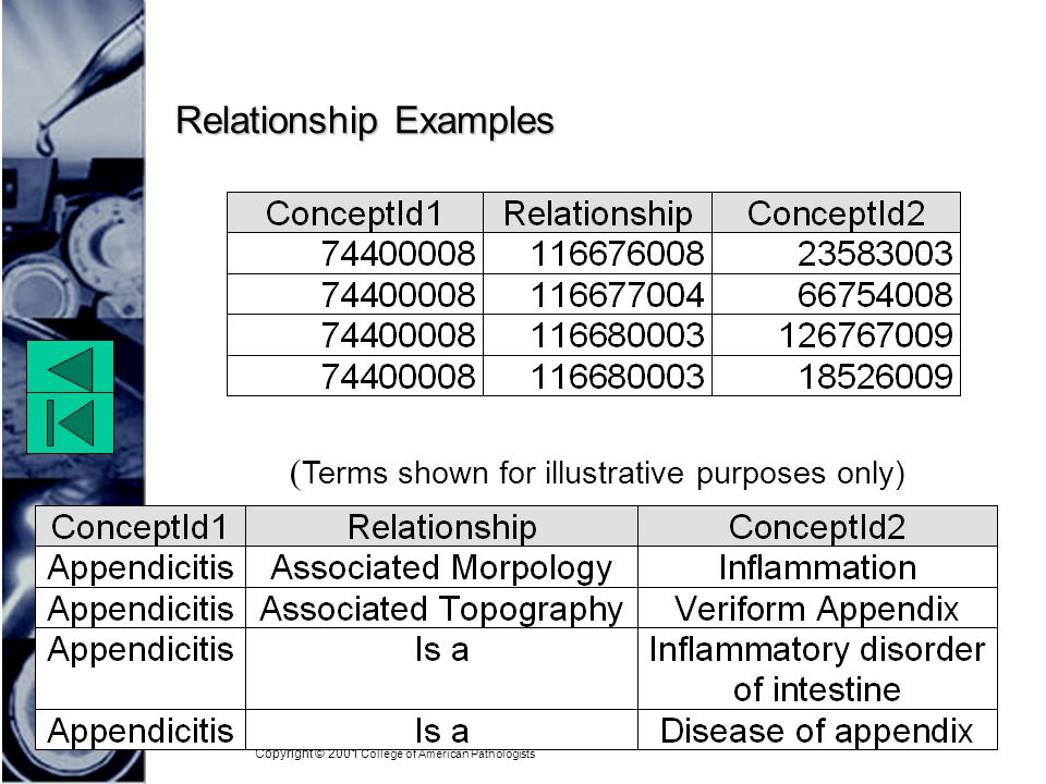 Copyright © 2001 College of American Pathologists Relationship Examples ( Terms shown for illustrative purposes only)