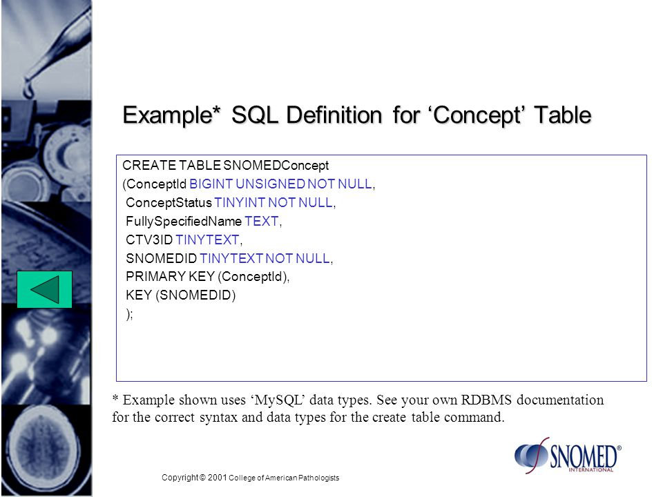 Copyright © 2001 College of American Pathologists Example* SQL Definition for Concept Table CREATE TABLE SNOMEDConcept (ConceptId BIGINT UNSIGNED NOT NULL, ConceptStatus TINYINT NOT NULL, FullySpecifiedName TEXT, CTV3ID TINYTEXT, SNOMEDID TINYTEXT NOT NULL, PRIMARY KEY (ConceptId), KEY (SNOMEDID) ); * Example shown uses MySQL data types.