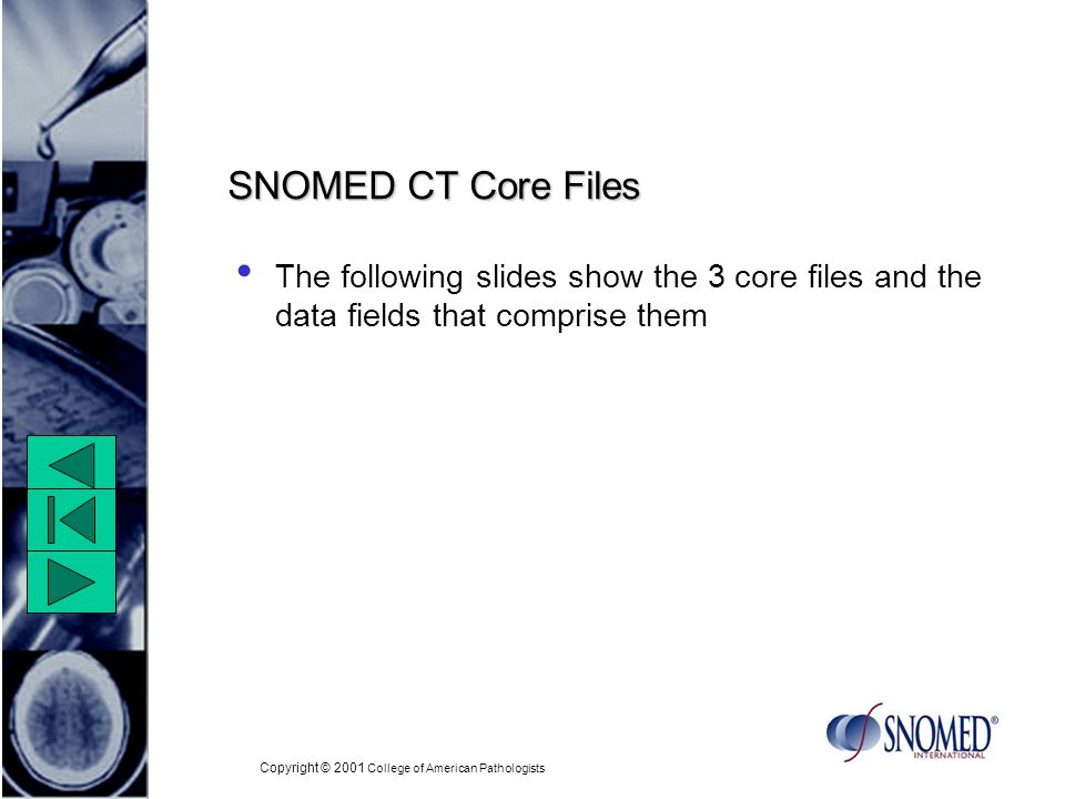 Copyright © 2001 College of American Pathologists SNOMED CT Core Files The following slides show the 3 core files and the data fields that comprise them