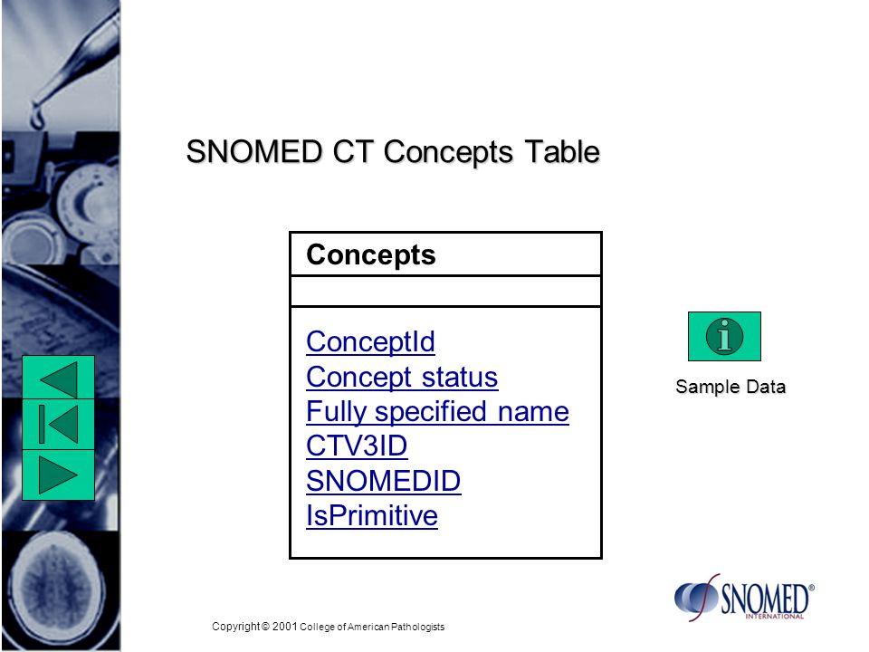 Copyright © 2001 College of American Pathologists Concepts ConceptId Concept status Fully specified name CTV3ID SNOMEDID IsPrimitive SNOMED CT Concepts Table Sample Data