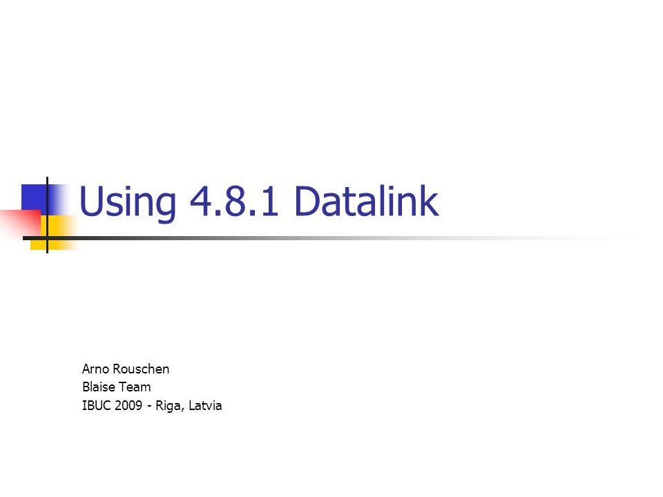 Using 4.8.1 Datalink Arno Rouschen Blaise Team IBUC 2009 - Riga, Latvia