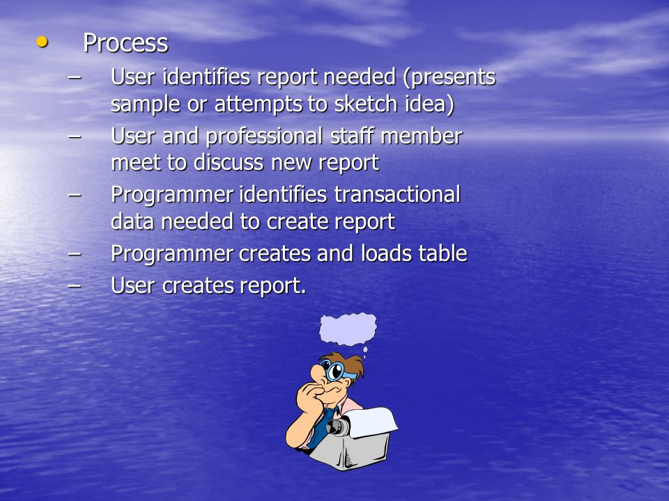 Process Process –User identifies report needed (presents sample or attempts to sketch idea) –User and professional staff member meet to discuss new report –Programmer identifies transactional data needed to create report –Programmer creates and loads table –User creates report.