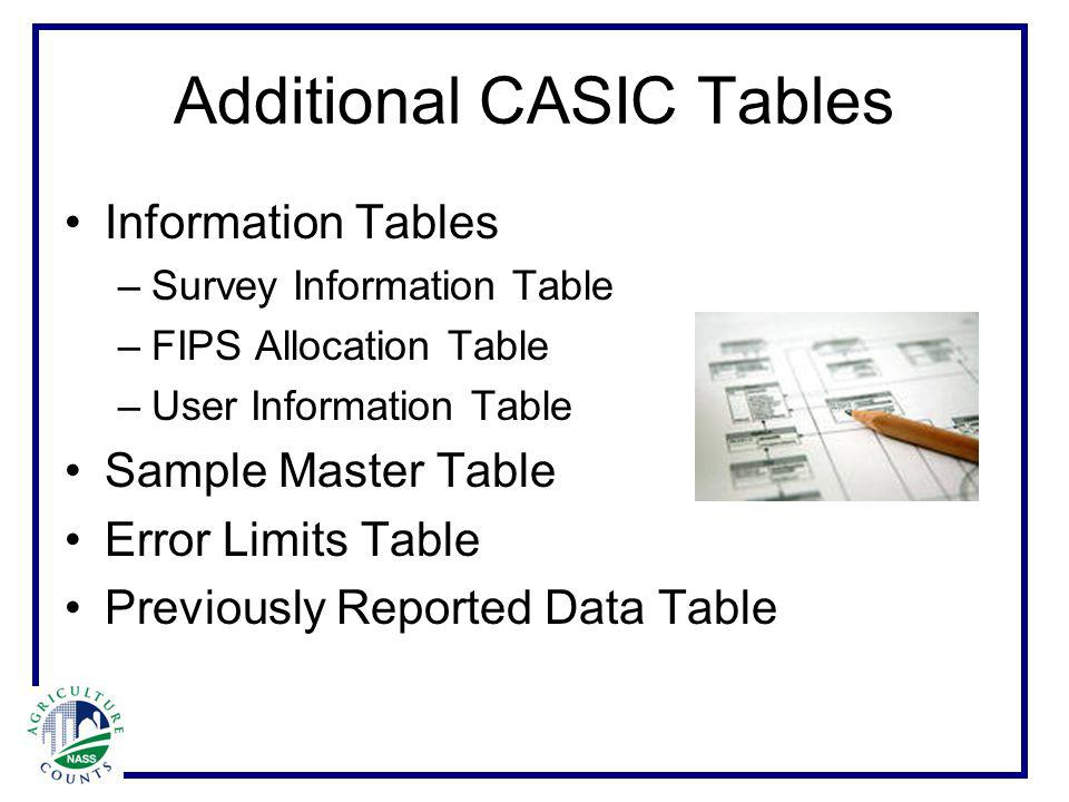Additional CASIC Tables Information Tables –Survey Information Table –FIPS Allocation Table –User Information Table Sample Master Table Error Limits Table Previously Reported Data Table