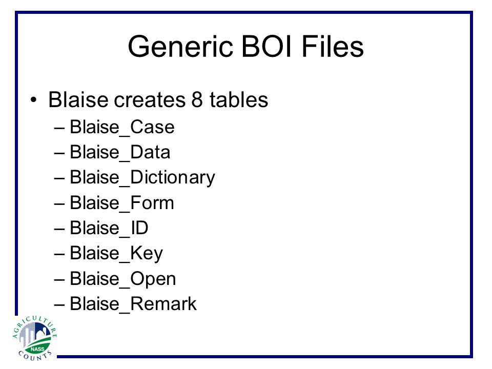 Generic BOI Files Blaise creates 8 tables –Blaise_Case –Blaise_Data –Blaise_Dictionary –Blaise_Form –Blaise_ID –Blaise_Key –Blaise_Open –Blaise_Remark