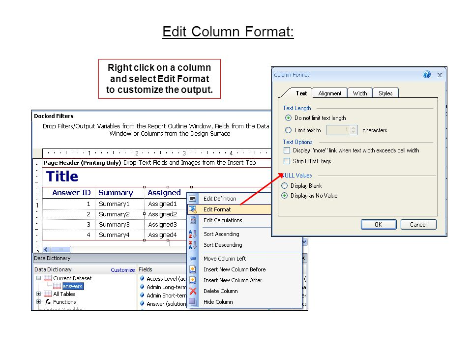 Edit Column Format: Right click on a column and select Edit Format to customize the output.