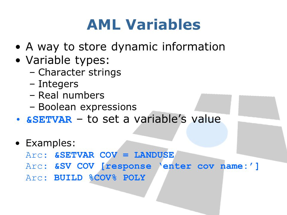 AML Variables A way to store dynamic information Variable types: –Character strings –Integers –Real numbers –Boolean expressions &SETVAR – to set a va