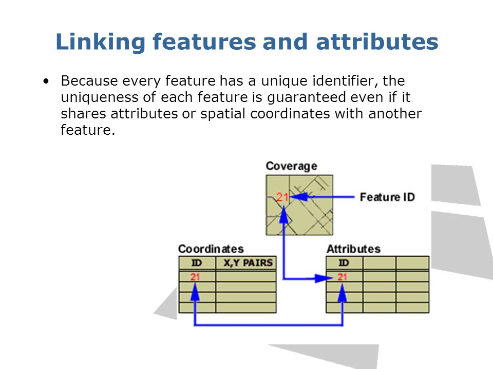 Linking features and attributes Because every feature has a unique identifier, the uniqueness of each feature is guaranteed even if it shares attribut