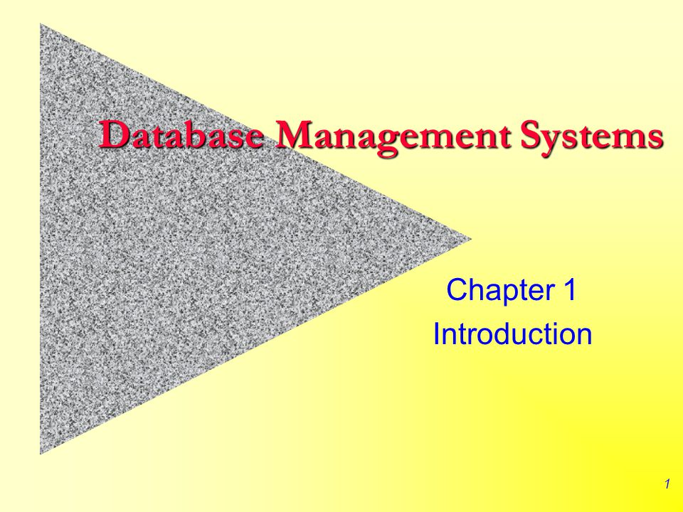 1 Database Management Systems Chapter 1 Introduction